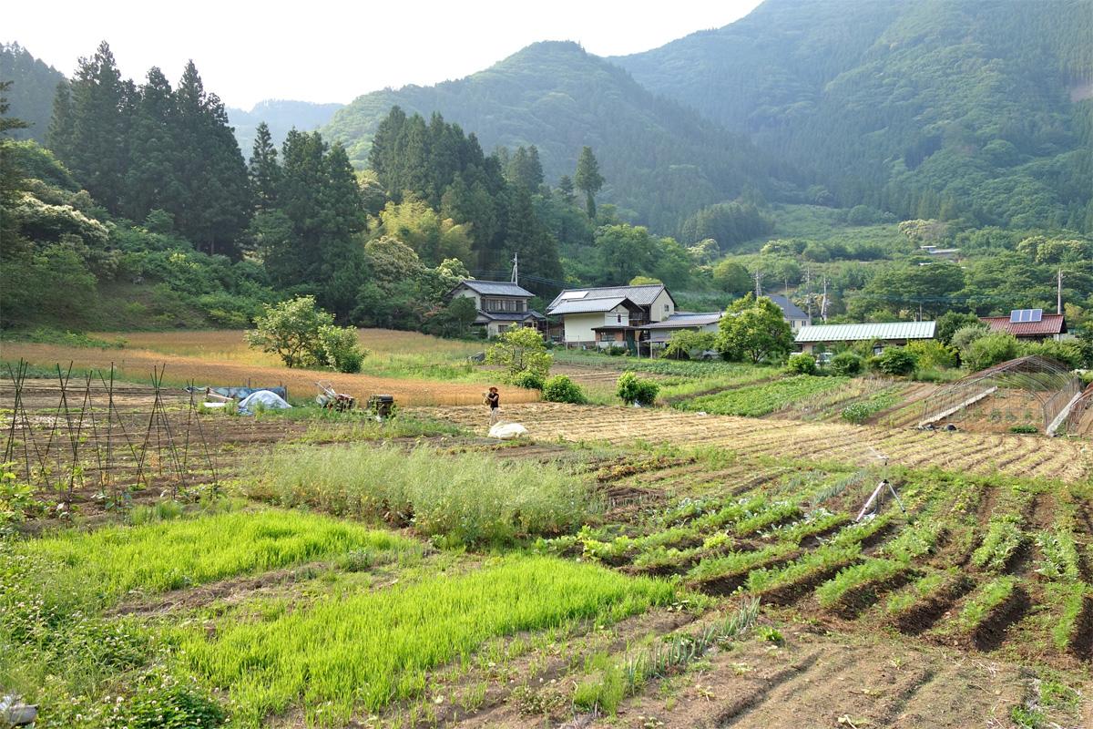 agricultureへ